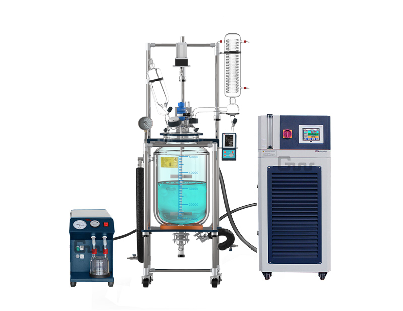 50L/80L/100L Glass Reactor